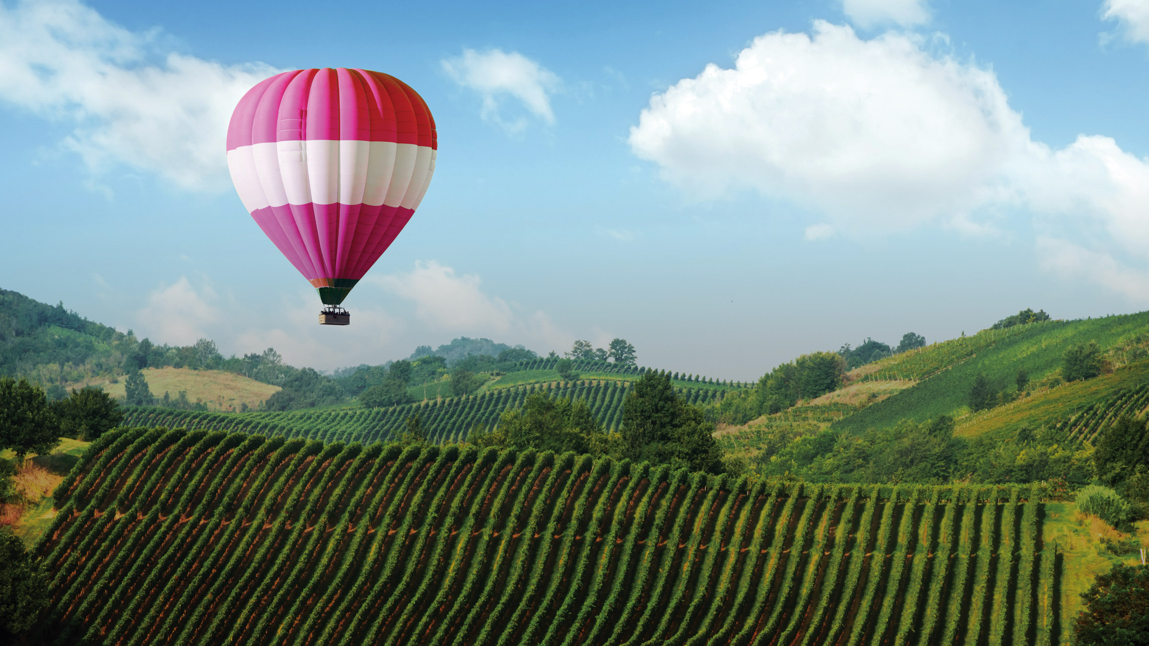 Fairmont California Wine Country Tour–Winners Choice